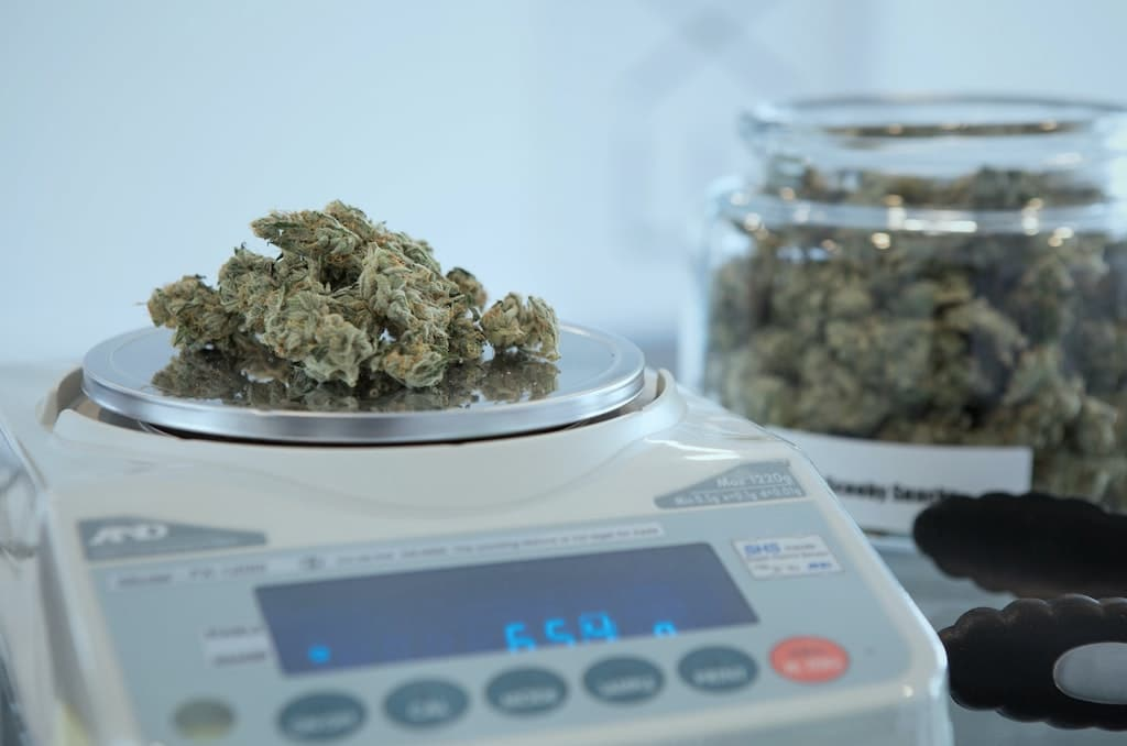 cannabis flower on scale, psychedelic dosage guide