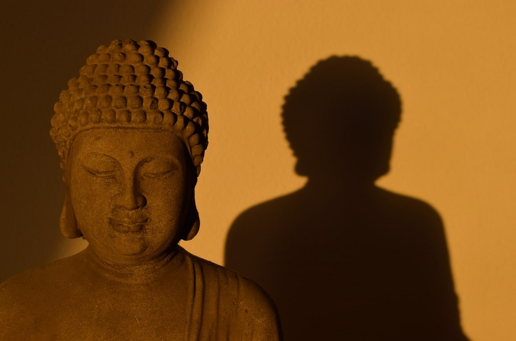 buddha statue against shadow, psychedelic paranormal experiences
