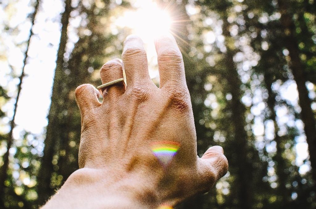 hand reach toward sun in forest, enduring risk psychedelic use