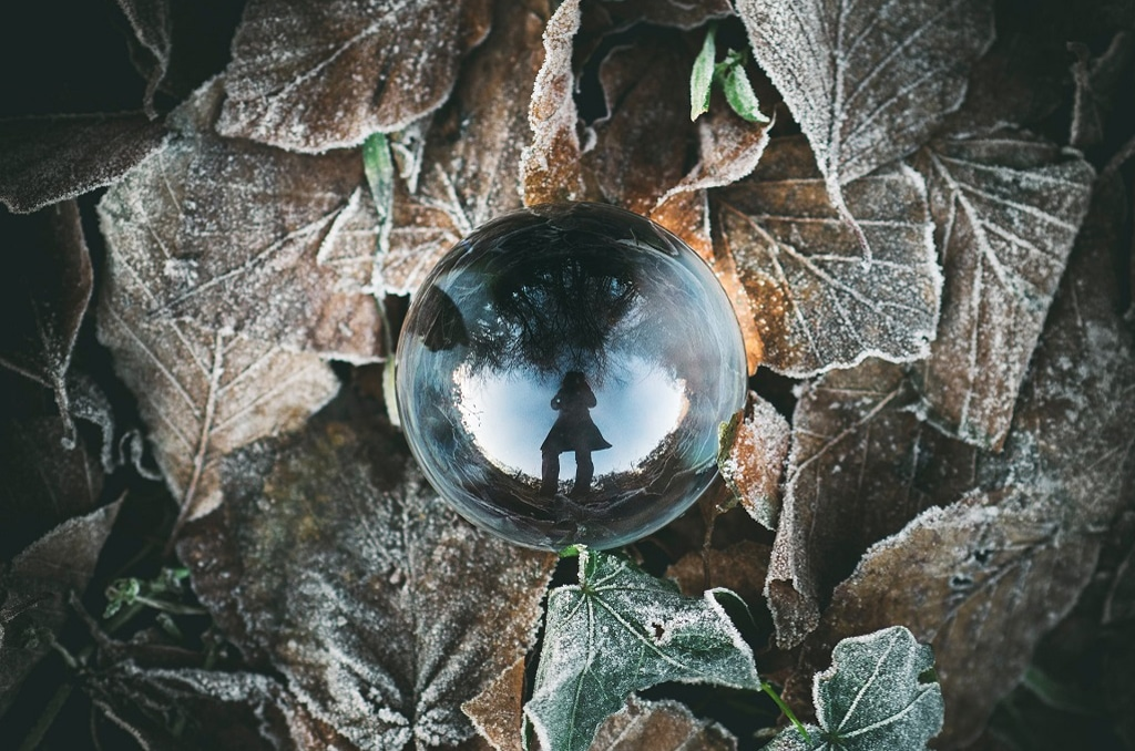 glass orb on frosted leaves, defining natural psychedelics