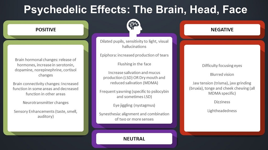 infographic on psychedelic effects in the brain head and face
