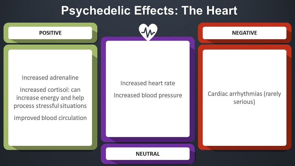 infographic on psychedelic effects in the heart