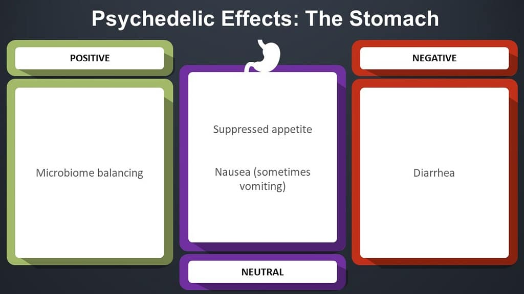 infographic on psychedelic effects in the stomach