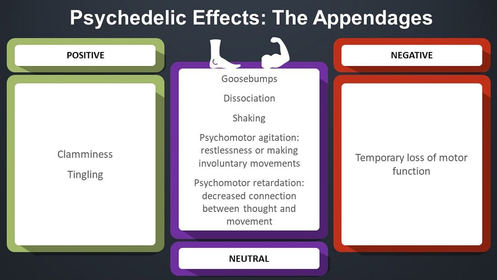 infographic on psychedelic effects in the appendages