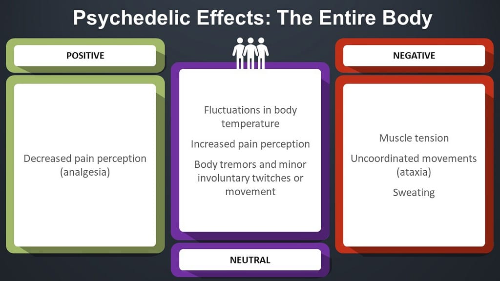 infographic on psychedelic effects in the entire body