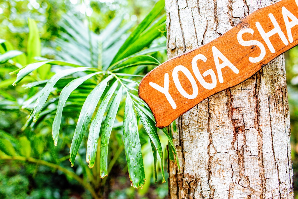 yoga wellness retreat, where to get psychedelics legally