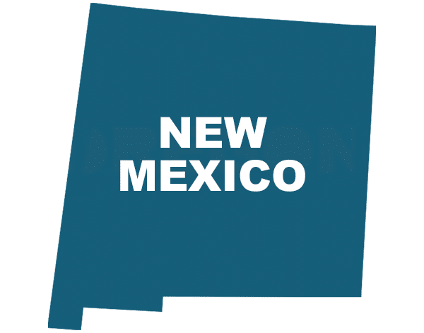 New Mexico State Outline